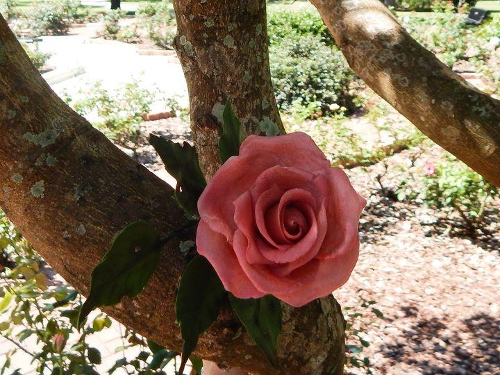 Tmx 1400650577218 Park Ave Rose In Tre Orlando wedding cake