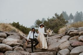 Wild Coast Photography