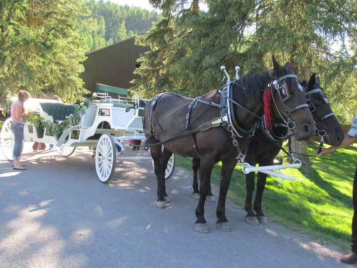 Tmx 1437071701761 Img3691 Trego wedding transportation
