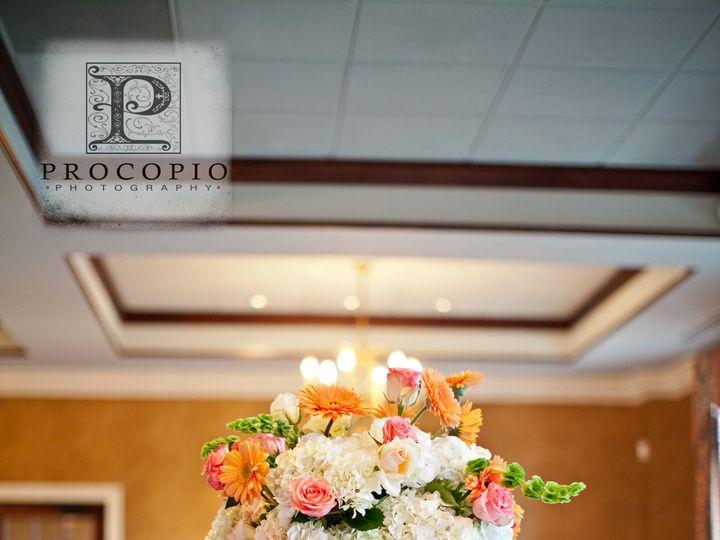 Tmx 1421114528567 050111w Procopio Photography 0009 Delaplane wedding florist