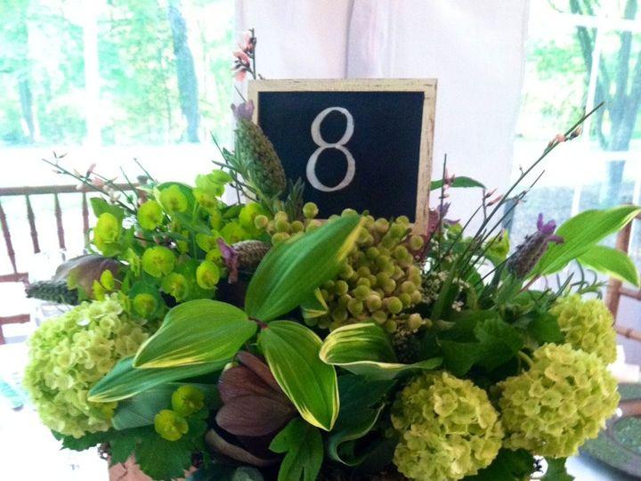 Tmx 1421116279422 Centerpiece On Wood Delaplane wedding florist