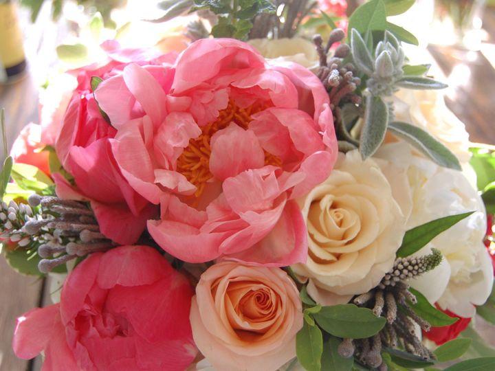 Tmx 1421117502142 Dsc0042 Delaplane wedding florist
