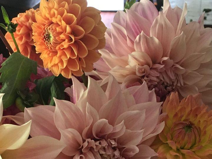 Tmx 1515455678 4e780ffaff8f825c 1515455674 236fc54187b3bd5f 1515455488824 6 IMG 2745 Delaplane wedding florist