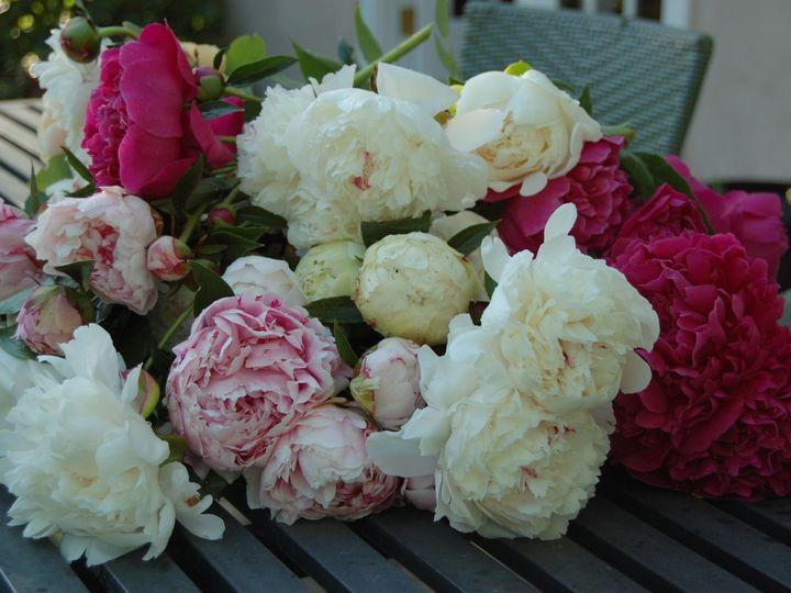 Tmx 1515463572 8c216e81c3275c2e 1515463570 6b892a4ef746b4a0 1515463293814 1 DSC 0004 Delaplane wedding florist