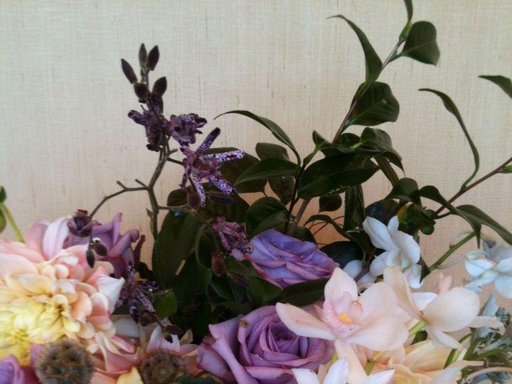 Tmx 1515464165 Ef23b83f3c995fce 1515464163 0c49b33c340208a6 1515464102836 2 136 Delaplane wedding florist