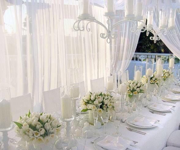Long table set-up with flower centerpiece