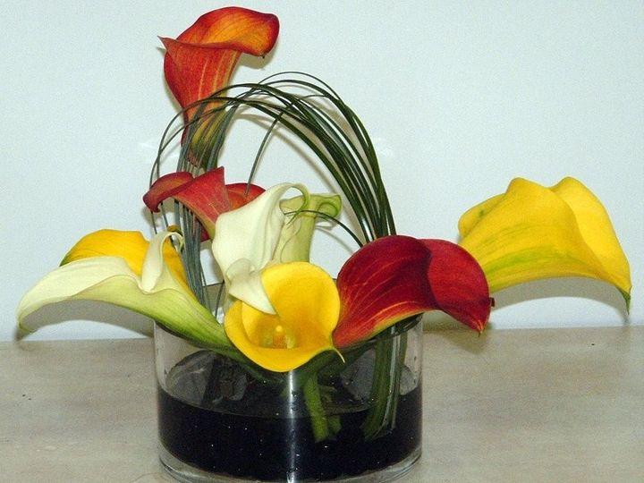 Tmx 1455918619968 W15 Plantation, FL wedding florist