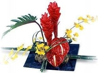 Tmx 1455918625420 W14 Plantation, FL wedding florist