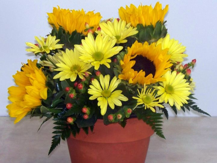 Tmx 1455918654355 W11 Plantation, FL wedding florist
