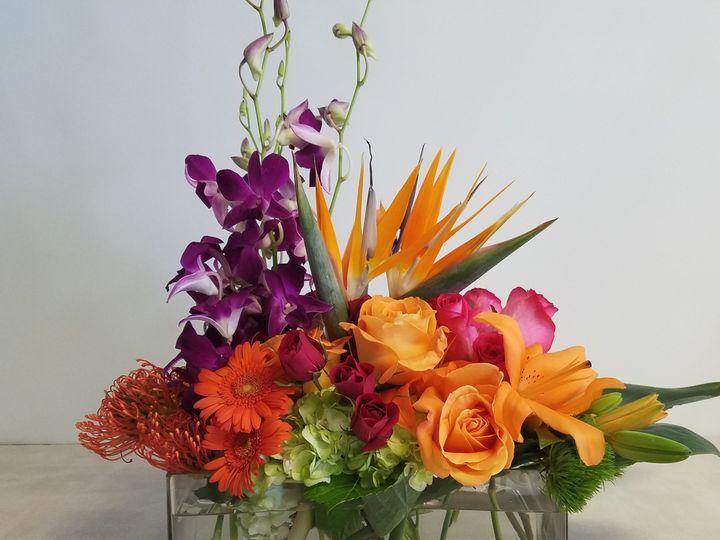 Tmx 1502546239175 Gail1 Plantation, FL wedding florist