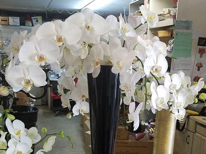 Tmx 1509568882600 Blackvase Plantation, FL wedding florist