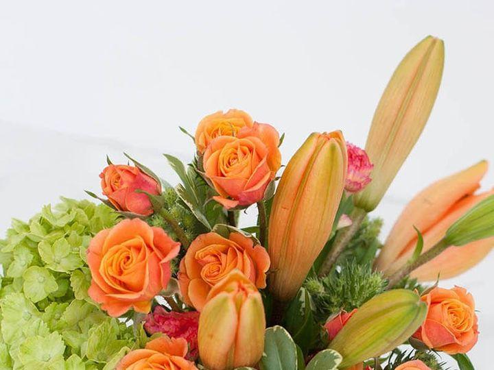 Tmx S9 51 372727 158343791988742 Plantation, FL wedding florist
