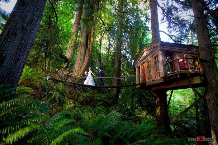 Tmx Treehouse Point Wedding Seattle 51 1925727 158164163484733 Veradale, WA wedding travel