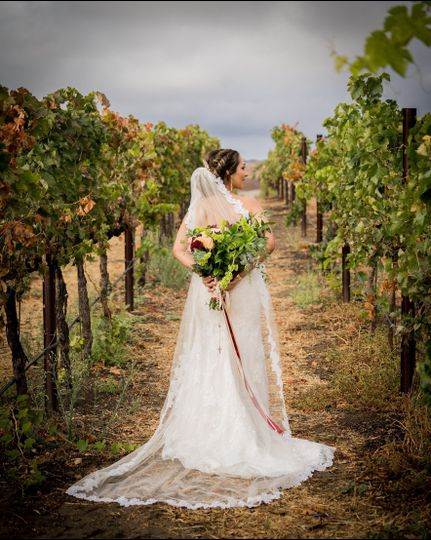 The bride in the vineyards