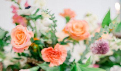 Haven Florals
