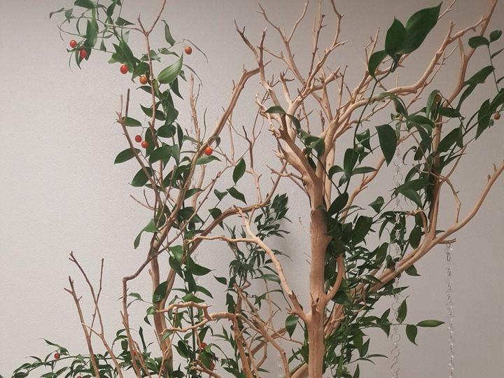 Tmx 20181102 133920 51 987827 Wyckoff, New Jersey wedding florist