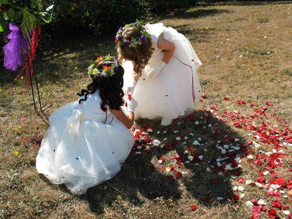 Tmx 1254931884695 IMG3613 Comptche, CA wedding officiant