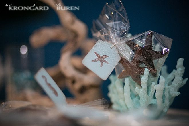 Maritime aquarium norwalk wedding