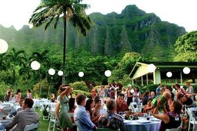 Hawaii Coffee & Tea Catering