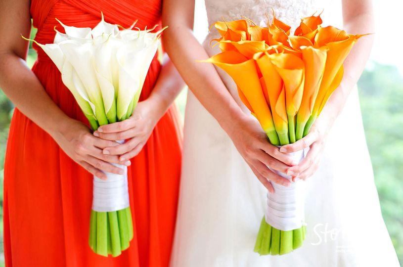 bouquets top wedding photographers costa rica