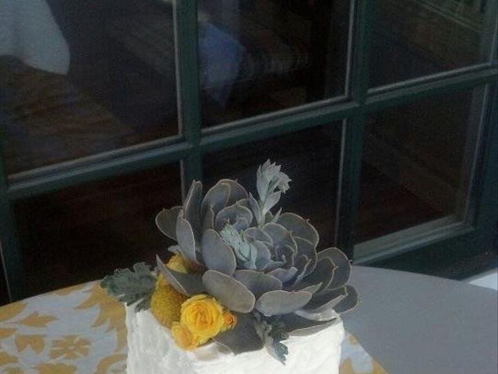 Tmx 1443035748608 Mini Succulent Cake Santa Rosa, California wedding cake