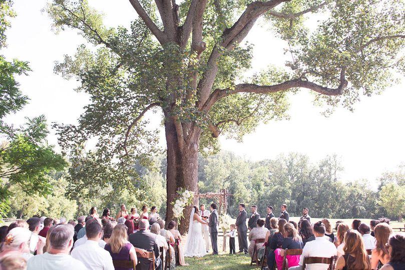 kristina josh wedding vsp233