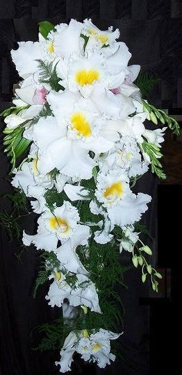 Orchids~Japhet, dendrobium, and cymbidium give this cascade bouquet style and grace