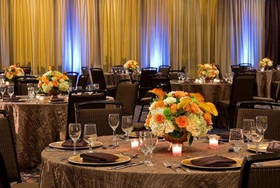 Tmx 1358878030224 She3748br.129269lg Tampa, FL wedding venue