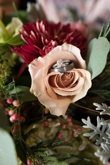 Rings in a rose