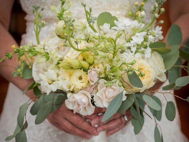 Tmx Img 1702 51 178137 1560396231 Poolesville, MD wedding florist