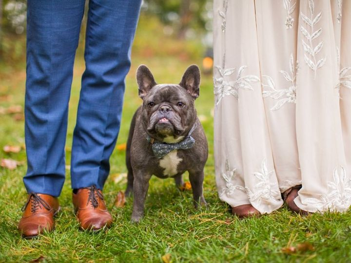 Tmx Twincities Wedding Photographer 6636 51 990237 160496786160788 Minneapolis, MN wedding planner