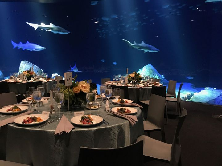 New York Aquarium Venue Brooklyn Ny Weddingwire