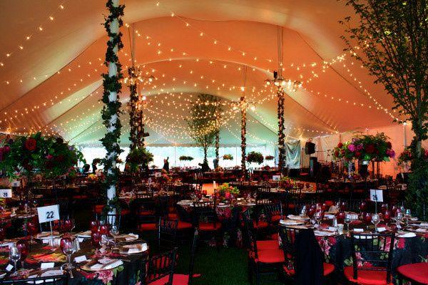 Stortz lighting lighting decor brooklyn ny weddingwire junglespirit Images