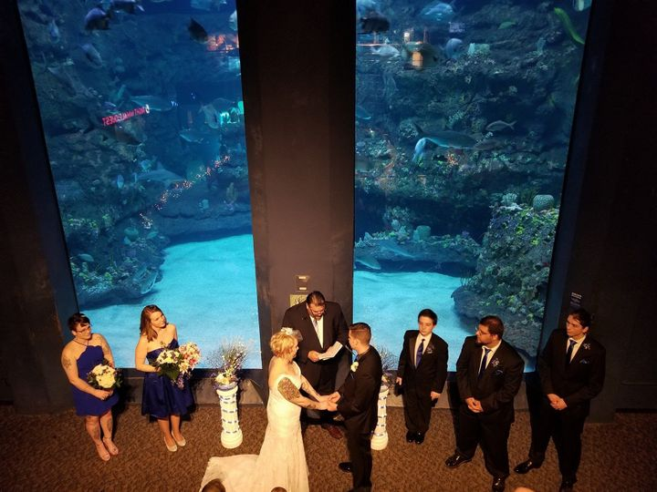 Tmx 1536711028 B80243348e3b4326 1536711027 633bb9bb1e56cf54 1536711025362 1 Aquarium Wedding Osceola Mills wedding dj