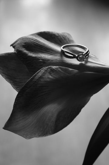 bw ring on petals