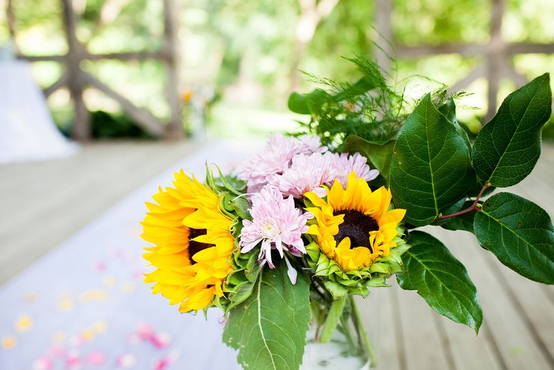 Sunflowers | Debbie Laughlin Photography