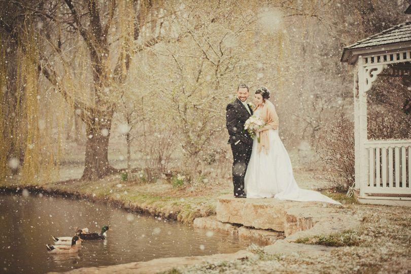 Snowy Ducks on the Pond