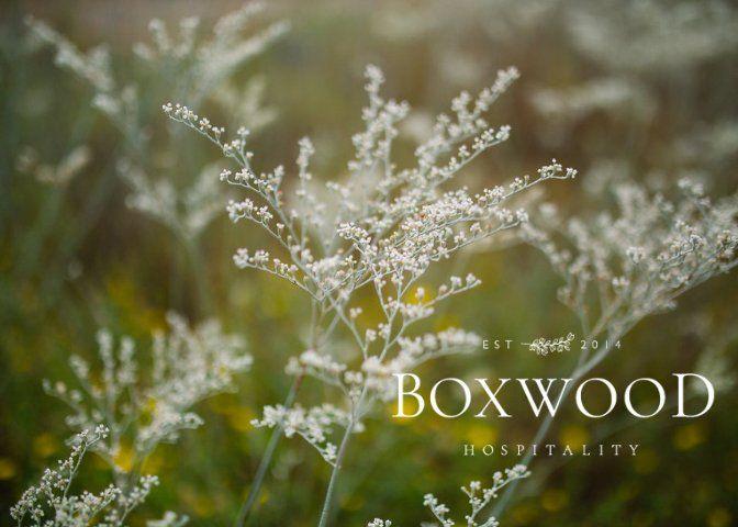 Under Boxwood Hospitality