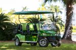 Exhilaride Golf Cart Rentals (Street Legal) image