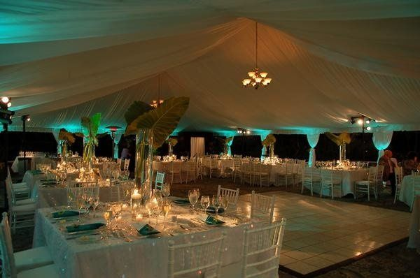 Upgraded Tent, Draping, and Lighting at the Deering Estate
