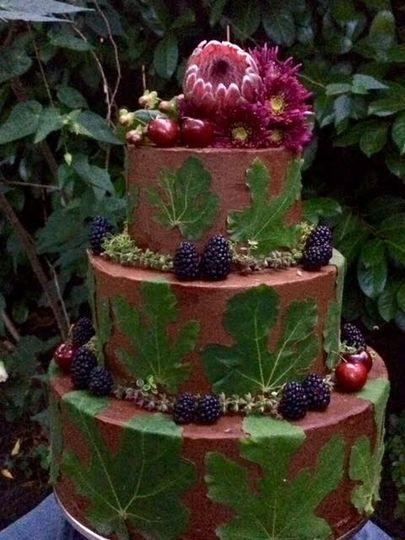 Milk chocolate fig cake