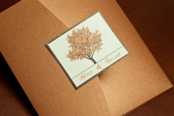 Tmx 1337283247046 Pocketfold1 Cornwall wedding planner