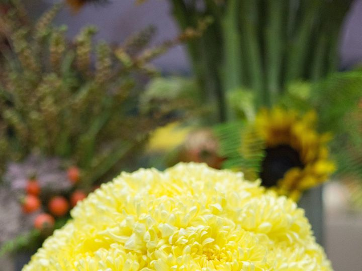 Tmx 1388182429683 Zupans Bravo Live 2013  Lake Oswego, OR wedding florist