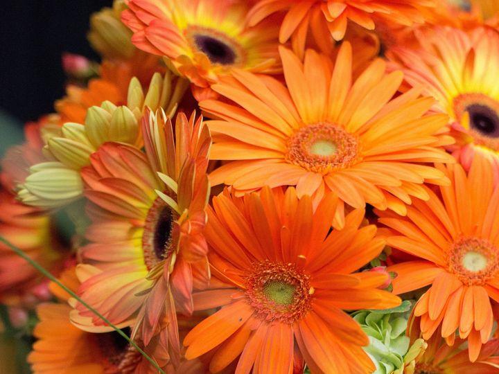 Tmx 1388182478005 Zupans Bravo Live 2013 1 Lake Oswego, OR wedding florist