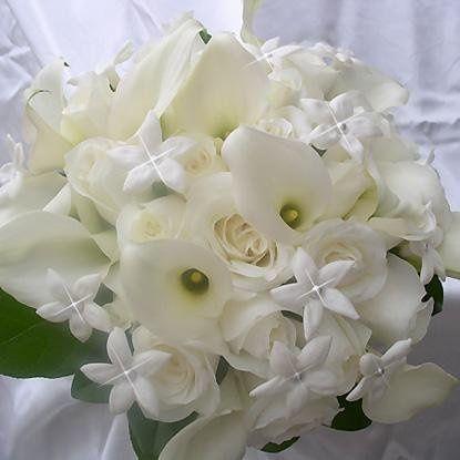 Tmx 1246562254849 Bou09 Peabody, Massachusetts wedding florist