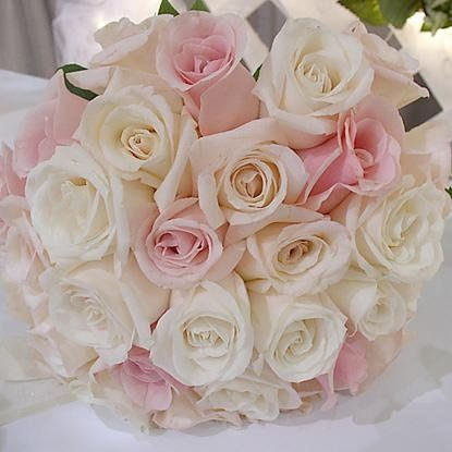 Tmx 1246562256224 Bou14 Peabody, Massachusetts wedding florist