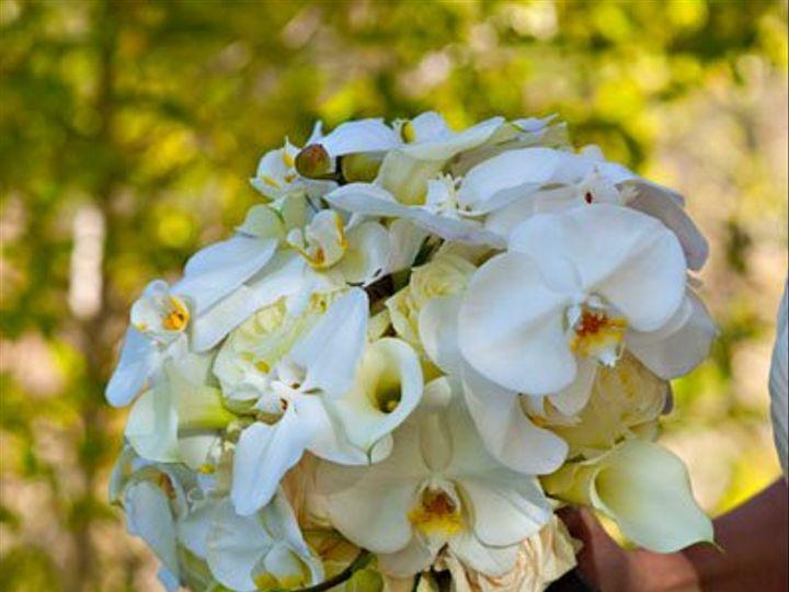 Tmx 1316710830610 Weddingflowers Boulder wedding planner