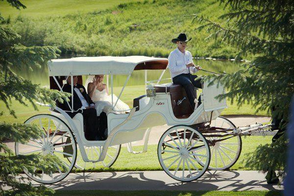Tmx 1316713695664 Weddingcarriage Boulder wedding planner