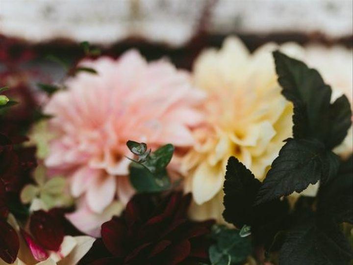 Tmx 29473041 2341290812563383 1613942168878055424 O 51 954637 V1 Perkasie, PA wedding florist