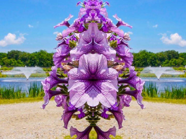 Tmx 0628 Arrieche 1 Flowers M 51 1961737 158610777196384 Charlottesville, VA wedding videography